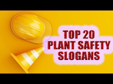 Plant Safety Slogans | Top 20