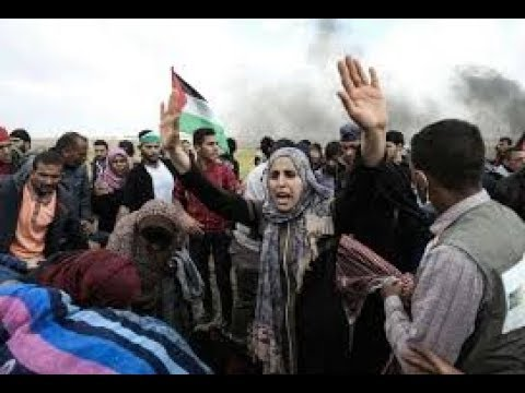 Resistance in the Gaza Strip and in the US to Israeli Occupation and Violence