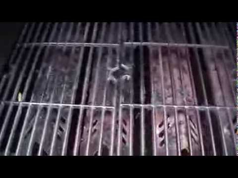 How To Keep Barbecue Grill Grate Clean and Rust Free