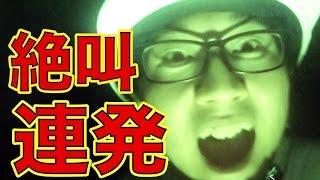 公式HP:http://www.shochiku.co.jp/kanshicamera/ あっちそっちよっち...
