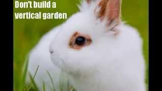 Vertical Gardening Ideas, Planters & Kits