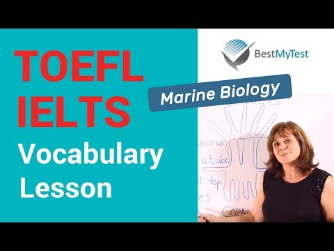 How to Answer an IELTS Matching Heading Question Type