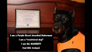 The Majority Campaign -- Unmuzzle Ireland (end Bsl)