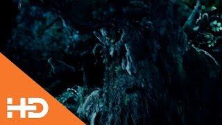 Энт Отводит Мерри и Пиппина к Гэндальфу ★ Властелин колец: Две крепости (2002)