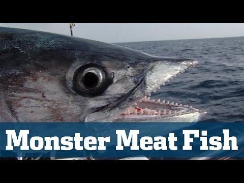 Monster Meat Fish Seminar - Florida Sport Fishing TV