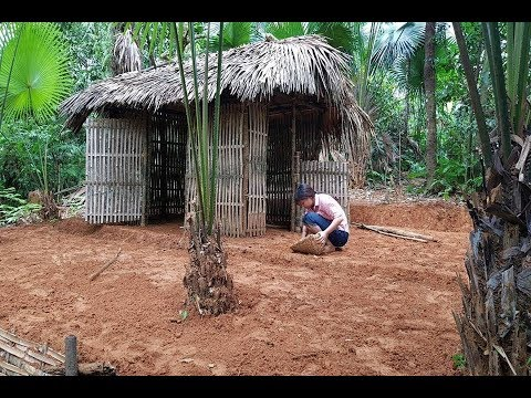 Primitive Technology Make Bamboo Tents And Create A Yard