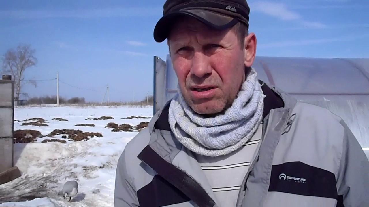 Немецкий судья засудил сборную России