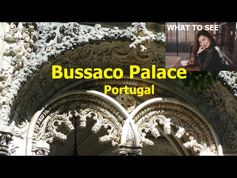 WHAT TO SEE : Bussaco Palace, a fairy-tale castle in an enchanted forest. Portugal