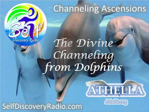 Self Discover Radio - The Divine Channeling from Dolphins