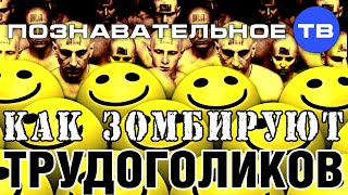 Как зомбируют трудоголиков (Познавательное ТВ, Ия Михайлова)