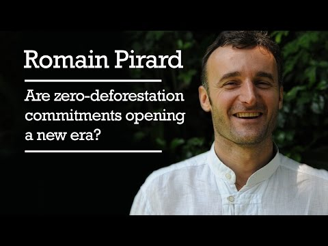 Romain Pirard – Are zero-deforestation commitments opening a new era?