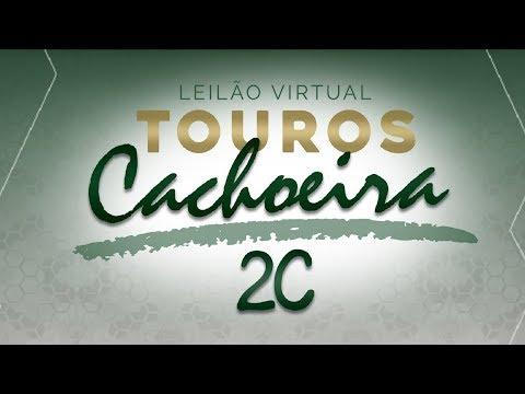 Lote 01 (2775 17 TE Cachoeira 2C - GCID 2775)