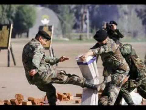 Brigada de Operaciones Especiales (BOE)