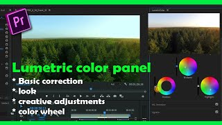 Gambar cover Lumetric color panel/ change look of clips in Adobe Premiere Pro.