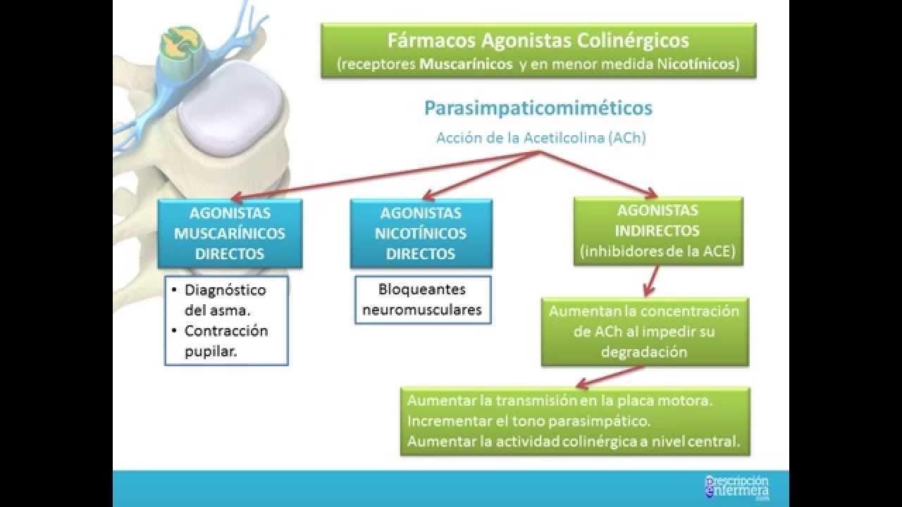 FARMACOS AGONISTAS COLINERGICOS - YouTube