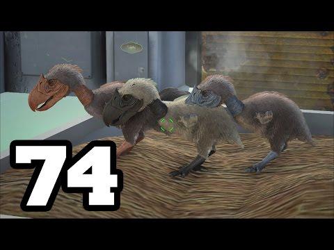 BEBES TERROR BIRD | ARK: Survival Evolved #74 | Temporada 4