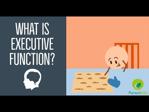 Need for Executive Functioning
