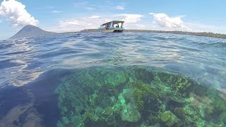Gambar cover Snorkelling The Manado Reef - Indonesia