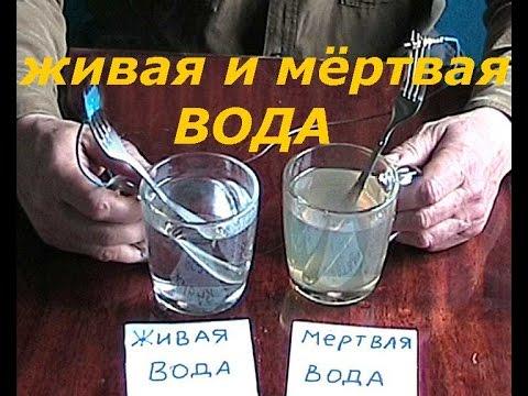 Кородецкий Александр. Живая и мертвая вода — совершенное