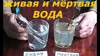 вода живая и мёртвая(Удобный и несложный прибор для получения живой и мёртвой воды в домашних условиях. Все детали для этого..., 2014-09-13T07:54:52.000Z)