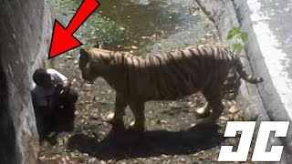 The Most SHOCKING Zoo Accidents