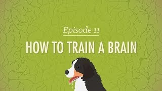How to Train a Brain: Crąsh Course Psychology #11