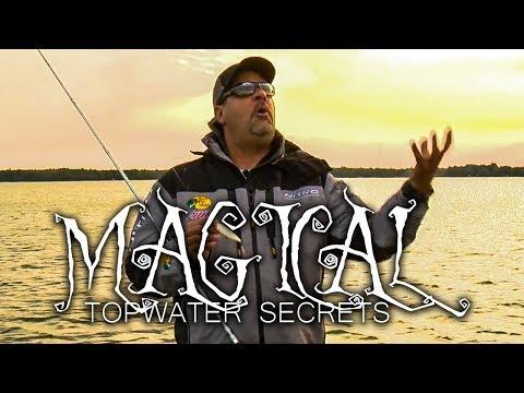 MAGICAL Bass Fishing SECRETS & Topwater Tips - Mark Zona