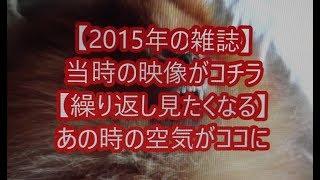 Japanese magazine 2015 4 17 【映画鑑賞&グッズ探求記 映画チラシ 劇...