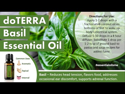 outstanding-doterra-basil-essential-oil-uses