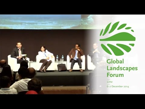 Financial forces in the landscape: Can fiscal and trade policies reduce deforestation?