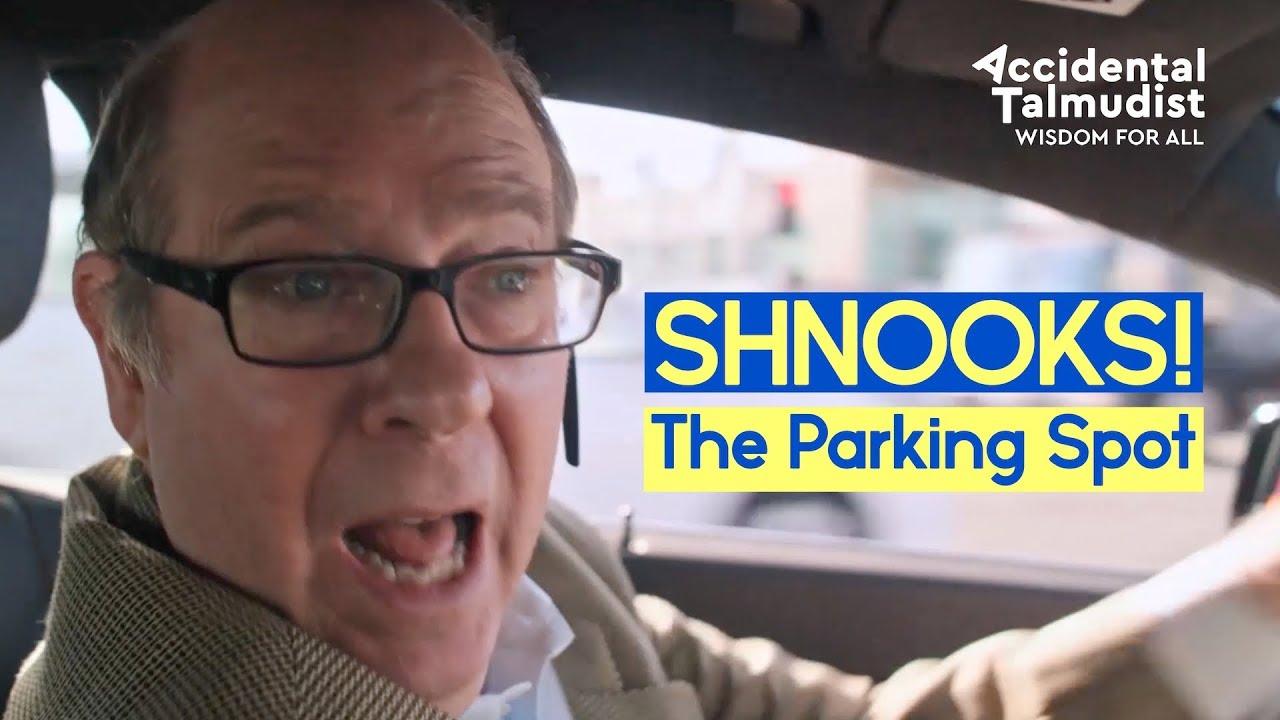"""SHNOOKS! """"The Parking Spot"""""""