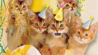 Happy Birthday Kittens