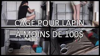 FAIRE UNE CAGE POUR LAPIN À MOINS DE 100$!