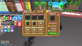 ROBLOX RPG WORLD OVERLORD (BEST PET) GIVEAWAY