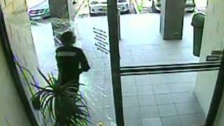 Thief fails big in pane-ful getaway thumbnail