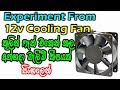 Experiment From 12v Cooling Fan / Electronic Lokaya