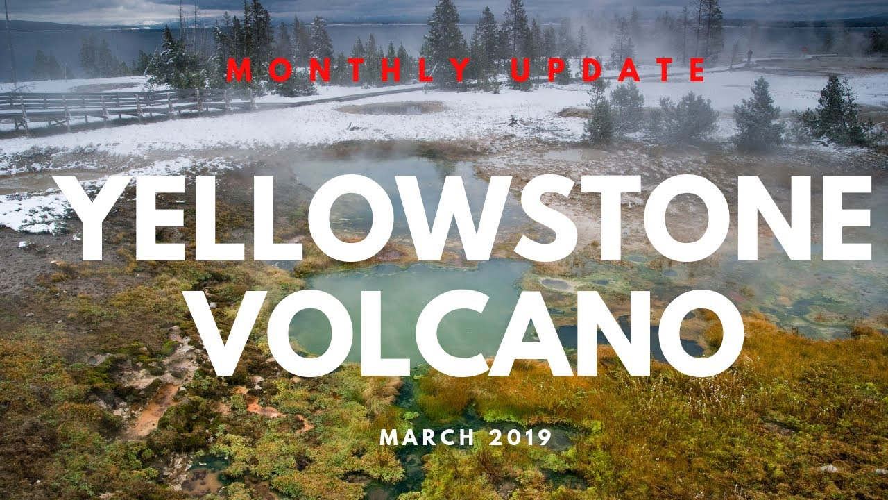 Yellowstone Monthly Update | March 2019