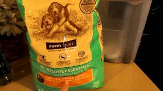 Food Change & Potty Training! What I Feed My Pitbull Puppy