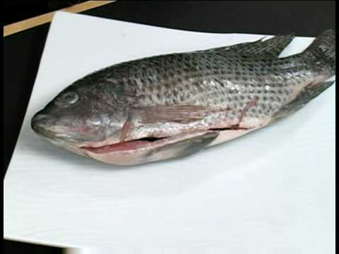 Cooking Tips : How To Thaw Fish