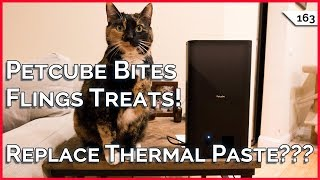 Petcube Bites Review! Should I Change My Thermal Paste??? Apartment WiFi Security!