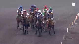 Vidéo de la course PMU PRIX JACQUES ANDRIEU