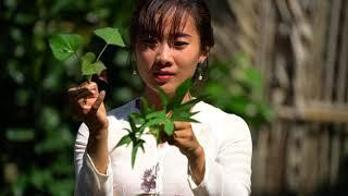 Khoai Lang Nướng Bến Tre -  Hương vị đồng quê
