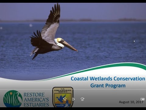 National Coastal Wetlands Conservation Grant Program