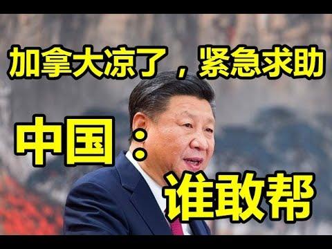 加拿大凉了,紧急求助!中国:谁敢帮!