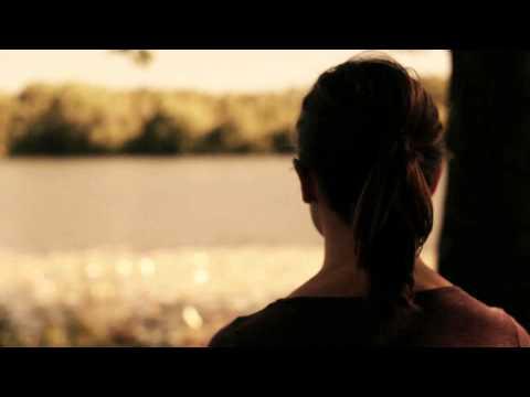 Diminutive Longevity: Teaser Trailer