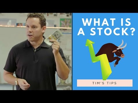 What Is A Stock? | Insider Secrets to Making Money Investing in the Stock Market  [2018]