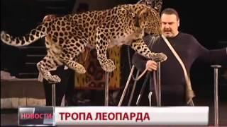 Аттракцион «Тропа леопарда». Новости. GuberniaTV
