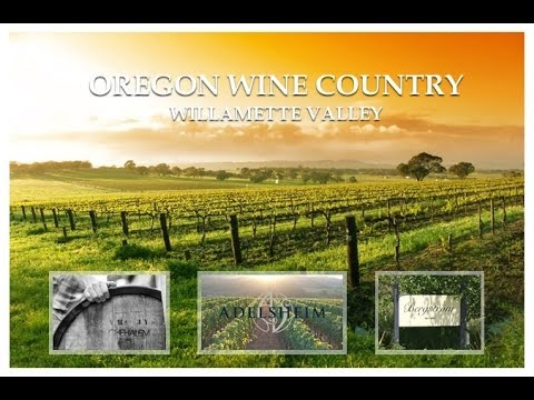 Best Chardonnay Wine-Willamette Valley, Oregon Review