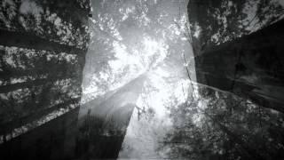 若旦那「ハル ~feat.Hiroya Ozaki~」LIVE映像(from AL「WAKADANNA 5~」)
