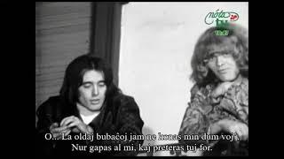 Omega – Régi csibészek – Esperanto – subteksto